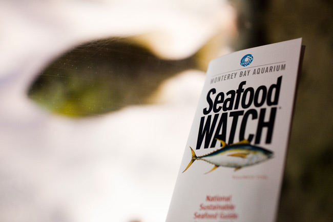 The Seafood Watch Pocket guide from the Monterey Bay Aquarium was created to help consumers make informed decisions when it comes to purchasing seafood